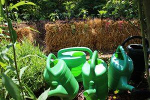 Stefan bepflanzt Strohballen