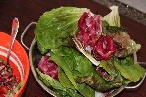 Radicchio Salat vom Strohballen