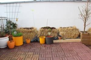welche Pflanzen sollen auf´s stroh